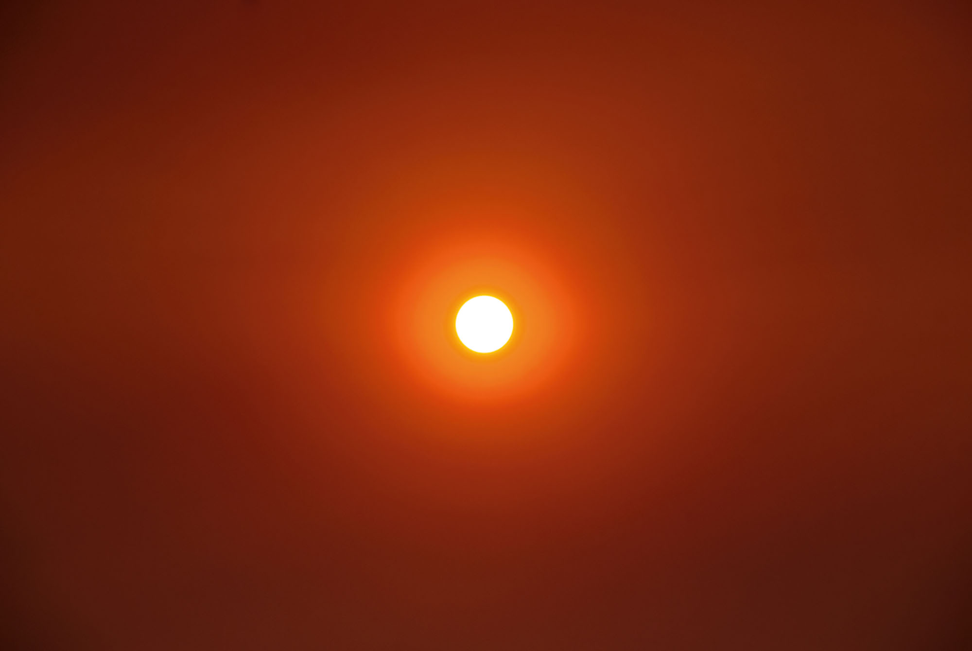 Nicholas Mangan, *Friday the 13th*, 2009, C-type print, 98.5 × 68.5 cm. Picture of the sun on the 13th of February, seven days after the Black Saturday bush fires in Victoria, Australia.